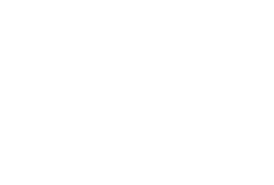 Südraum Immobilien